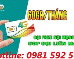 Đăng Ký Sim V90 của VIETTEL Quảng Ngãi
