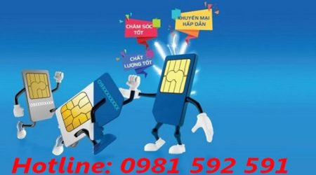 Dịch vụ chuyển mạng giữ số